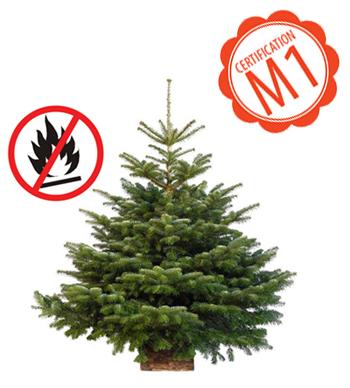 sapin Noël anti feu ignifugé certifié M1 lieu public Nordmann Epicéa