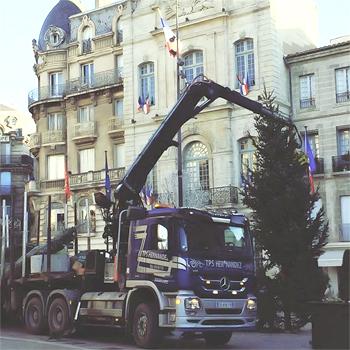 installation sapin géant livré installé ville 15m